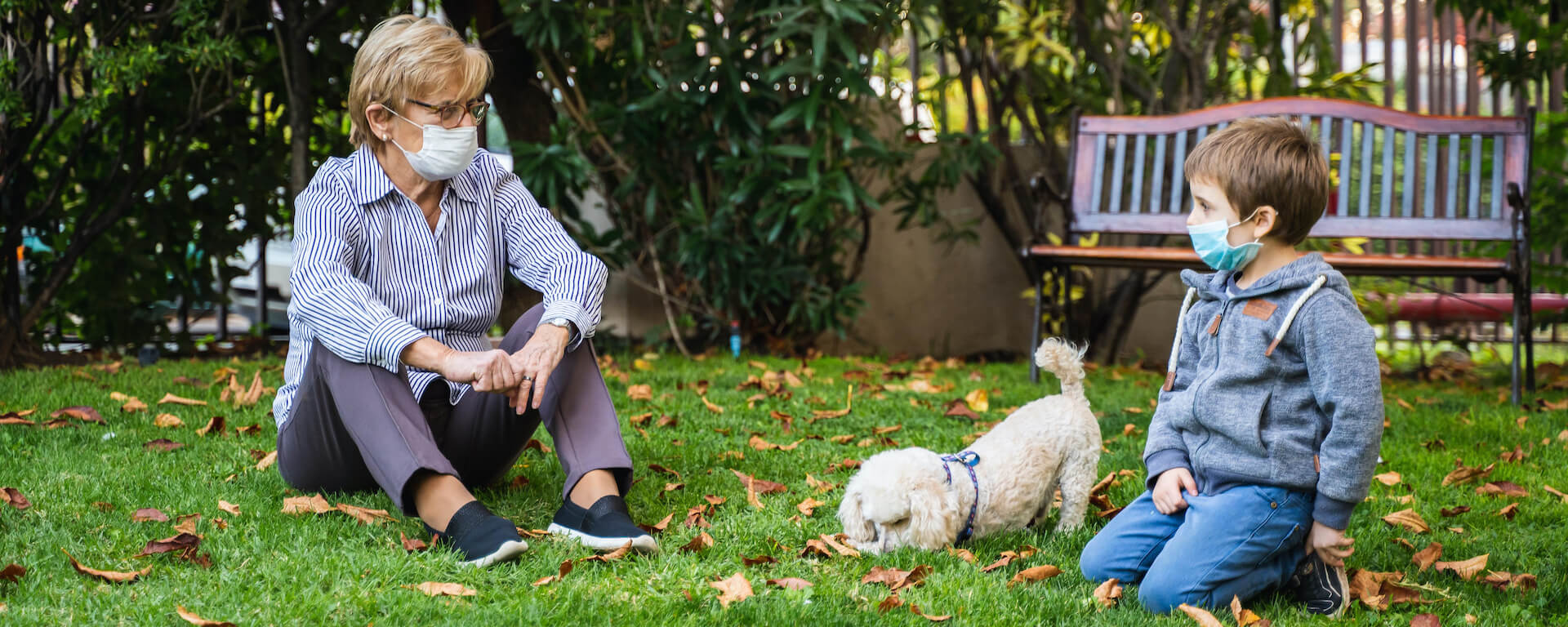 Expert Support & Resources for Families with Dogs